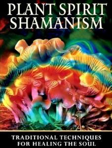 Plant Spirit Shamnism